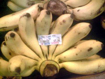 pisangsusu