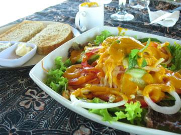 sariorganic-salad