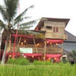 田んぼの中のバンブーハウス